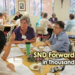 <!--:en-->SND Forward Program in Thousand Oaks, USA<!--:--><!--:de-->SND Fortbildung in Thousand Oaks, USA<!--:--><!--:ko-->미국, 타우젠드 옥스 SND 포워드 프로그램<!--:--><!--:id-->Program SND Forward di Thousand Oaks, AS<!--:-->