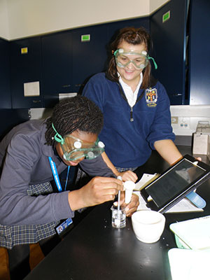 NDA_biology: Students conduct an experiment in IB Biology Class at Notre Dame Academy, Toledo.