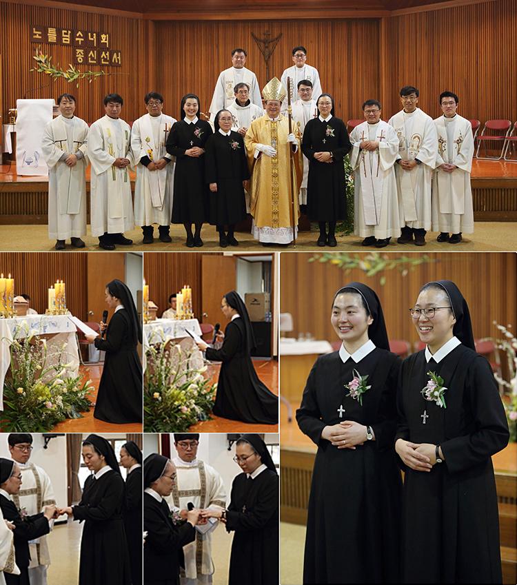 Final Profession In Regina Pacis Province, Korea, 2019